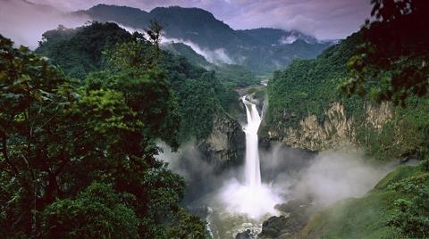 Amazon Ormanları Küresel Isınmaya Yenilmek Üzere