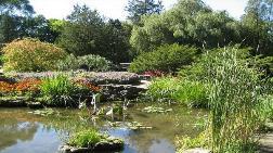 Milli Botanik Parkı İçinden Geçecek Yola Yargı Yolu