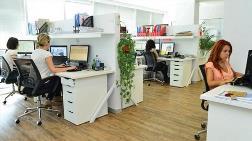 Y Kuşağı Ofiste Yeşil Konfor İstiyor