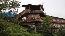 Kuzenine İnat Ceviz Ağacına Ev Yaptı