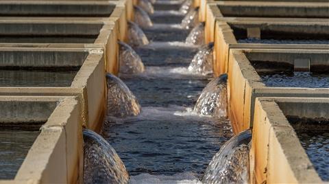 İzmir 'Su Zirvesi'ne Evsahipliği Yapacak