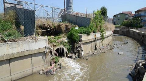 Kurbağalıdere Kanalizasyon Deresine Dönüştü!