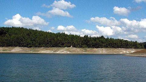 400 Baraj Ve Göletin Çevresi Ağaçlandırılacak
