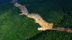 """""""Kuzey Ormanları'nın Tahrip Edilmesi Kuraklık Riskini Artırıyor"""""""
