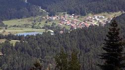 Bolu'da 51 Bin Hektarlık Yeşil Alan İmara Açıldı