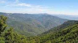 Danıştay Kaz Dağları için Verilen İptal Kararını Bozdu