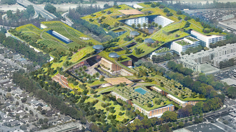 Dünyanın En Büyük Yeşil Çatısı Silikon Vadisi'nde