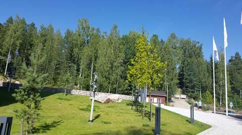 Finlandiya'nın En Önemli Sektörü Orman Endüstrisi