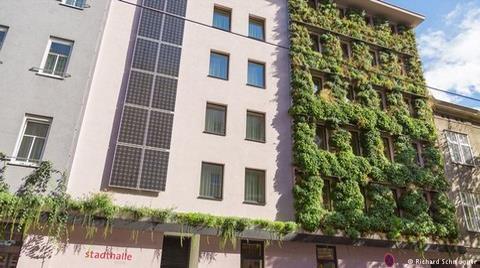 Aşırı Sıcaklarla Boğuşan Viyana Çözümü Doğada Arıyor