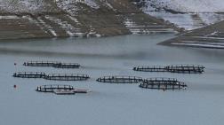 Baraj, Tarım Arazilerini Su Altında Bırakacak