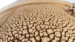 İngiltere Merkez Bankası'ndan İklim Değişikliği Uyarısı