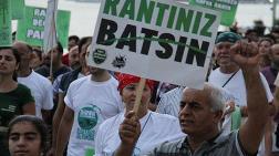 İstanbullu Yeşili Korumak İçin Nöbette