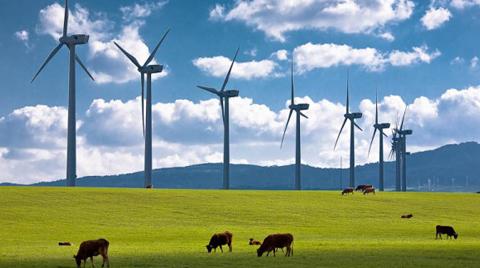 Rüzgar Enerjisindeki Şehir Efsaneleri Açıklandı