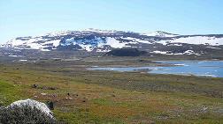 Norveç'ten Finlandiya'ya 100. Yıl Hediyesi: Halti Dağı