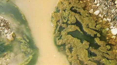 İstanbul Suyu Önergesi: Melen'le Yüz Bile Yıkanmaz!