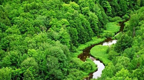 255 Bin Köylüye Hazine Arazileri Satılacak