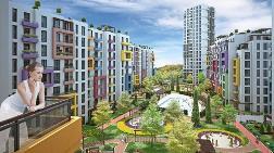 """""""Sitede Yaşam"""" Konsepti Tiflis'te Satış Rekorları Kırdırttı"""