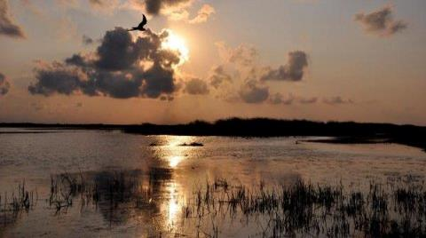 Kızılırmak Deltası UNESCO Listesinde