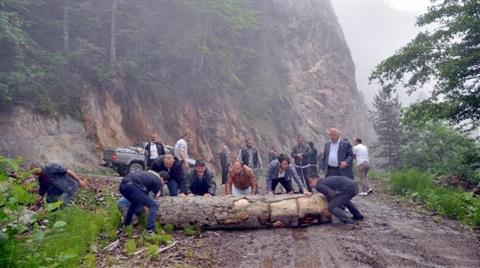 Cerattepe Davasında Cengiz'in Lehine Karar Çıktı