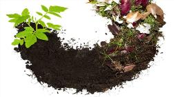 """""""Belediyelerin Sadece Yüzde 11'i Kompost Yapıyor"""""""