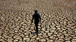 Orta Çağ İklim Krizinden 'Hızlı Değişim' Dersi Almalıyız!