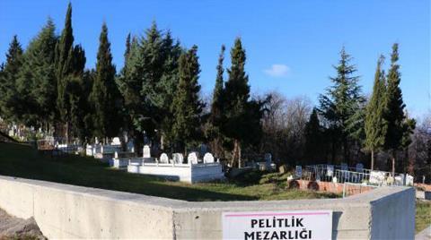 Ormanı 'Kaçak Mezarlık' Yapıp Parsel Parsel Sattılar