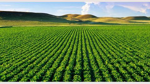 Tarımsal Sit Statüsü Geliyor!