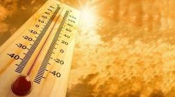 2016'da Sıcaklık Rekoru Kırıldı