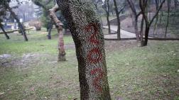 İBB, Maçka Parkı'nda Geri Adım Attı