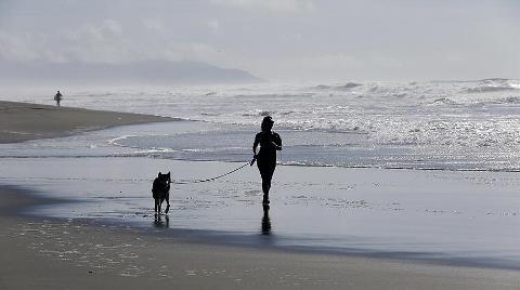 Okyanuslardaki Oksijen 50 Yılda Yüzde 2 Azaldı