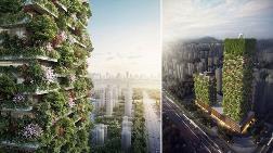 Hava Kirliliğine Karşı 'Orman Gökdelenler'