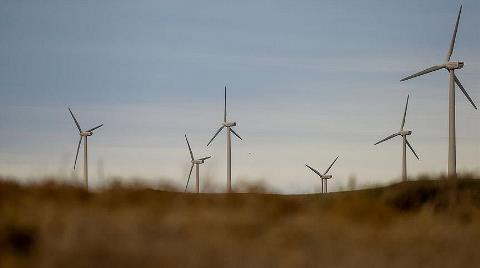 'Rüzgarda Potansiyelin 25'te Birini Kullanıyoruz'