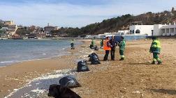 Kilyos Plajı'na Dökülen Molozlara İlişkin Açıklama