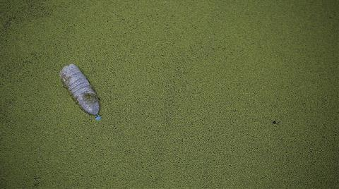 Kuzey Buz Denizi'nde Çöp Adası Oluşabilir