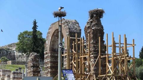 Restorasyon Çalışmalarına 'Leylek' Molası