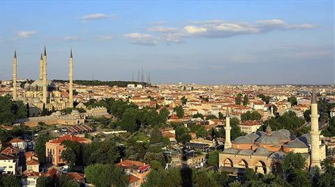 """Edirne'de Çam Ormanına """"Kedi Köyü"""" Yapılıyor"""
