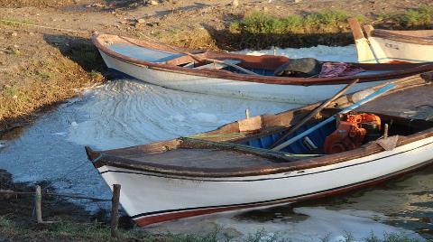 Bafa Gölü Yaşam Mücadelesi Veriyor