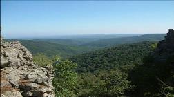 Istranca Ormanı'yla İlgili Yeni Karar