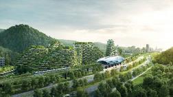 Çin İlk Orman Kentini İnşaya Hazırlanıyor