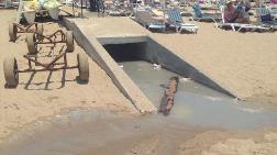 """""""Kanalizasyon Denize Akıyor"""""""
