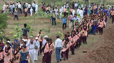 Gönüllüler 12 Saat İçerisinde 66 Milyon Ağaç Dikti
