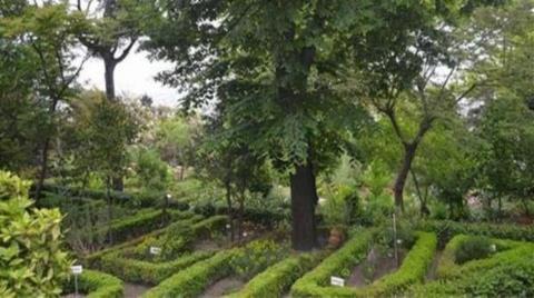 İstanbul Üniversitesi'nin Botanik Bahçesi Diyanet'e Tahsis Edildi