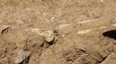 Marmaray Kazısında Tarihi Mezar Kalıntıları Bulundu