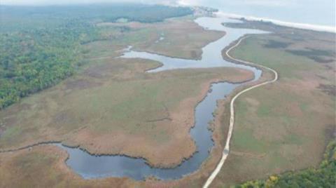 UNESCO'nun Istranca Ormanları Önerisini Önemsemedi