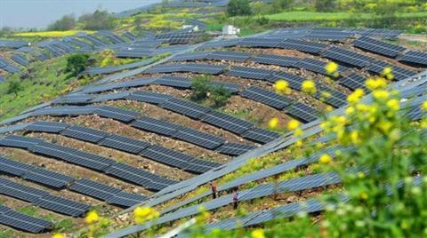 Sahra Çölü'ne 'Güneş Enerjisi Parkı' Projesi