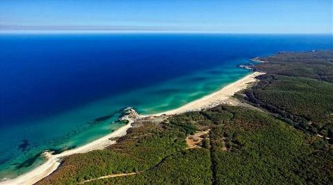 Trakya'nın Karadeniz Kıyısında 58 Bin Ağaç Kesilecek