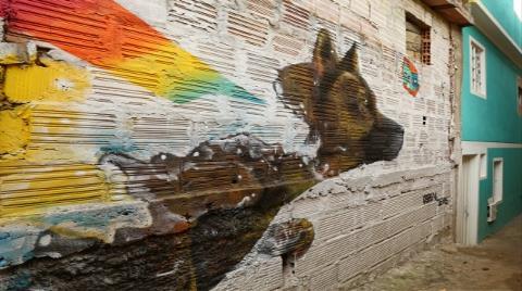 Grafitili Mahalle, Sakinlerinin Gururu Oldu