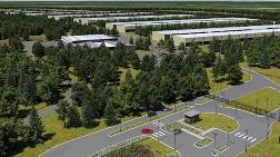 23 Futbol Sahası Büyüklüğündeki Ormanlık Alana Veri Merkezi