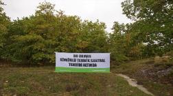 """""""En Az 250 Bin Ağaç Kesilecek"""""""