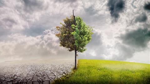 BM'den Paris İklim Anlaşması için Acil Eylem Çağrısı